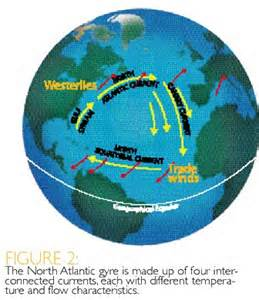 North Atlantic Current Gyre