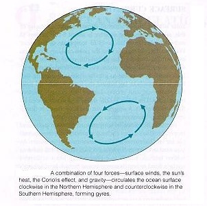 Ocean Currents and Coriolis Effect