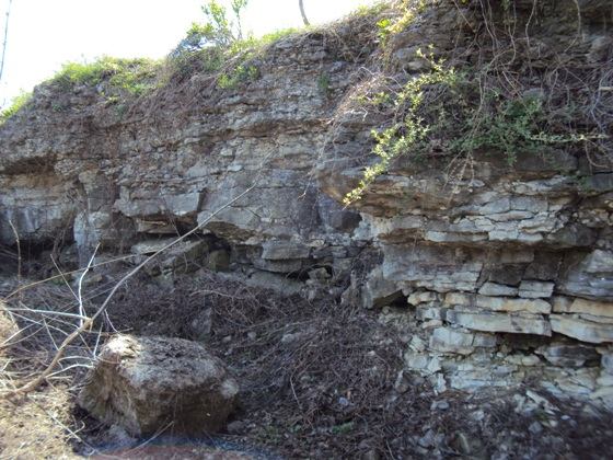 Onondaga Escarpment near Clarendon-Linden Fault